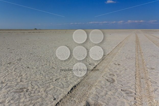 4wd track saltpan Kubu Island – Popular Stock Photos