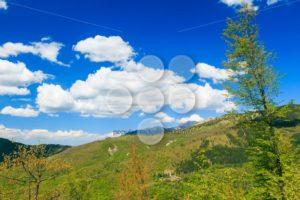 Apennine Mountains Italy vegetation - Popular Stock Photos
