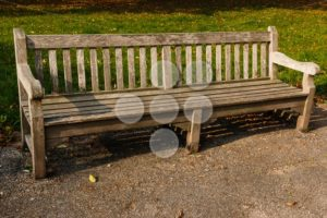 Bench park empty wood - Popular Stock Photos