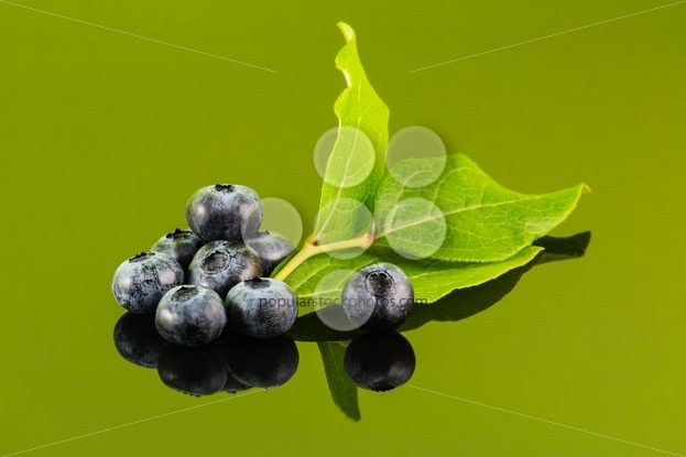 Blueberry on green background with leaf – Popular Stock Photos