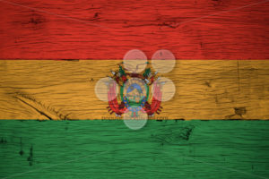 Bolivia national flag painted old oak wood - Popular Stock Photos