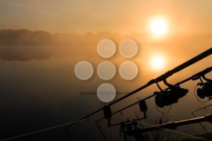 Carp fishing rods misty lake France - Popular Stock Photos