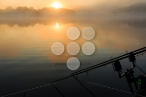Carp rods misty lake France - Popular Stock Photos