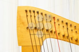 Celtic harp close-up lever and strings - Popular Stock Photos