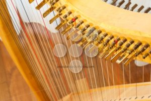 Celtic harp view from top - Popular Stock Photos