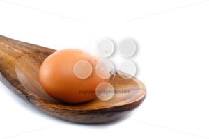 Close up egg with feather spoon - Popular Stock Photos
