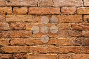 Close-up of old Italian wall - Popular Stock Photos