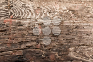 Close up of worn wood - Popular Stock Photos