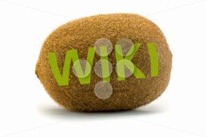 Concept wiki on kiwi Encyclopedia wikipedia green - Popular Stock Photos