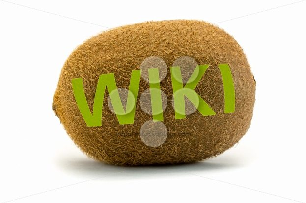 Concept wiki on kiwi Encyclopedia wikipedia green – Popular Stock Photos