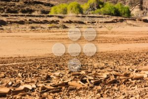 Dry riverbed surface cracked - Popular Stock Photos