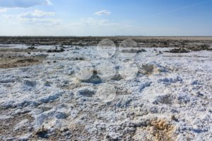 Endless salt pan Botswana, Kubu Island, Africa - Popular Stock Photos