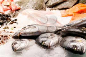 Fresh dorade fish market Barcelona - Popular Stock Photos