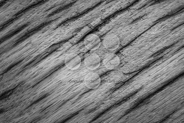 Gray texture very old oak wood – Popular Stock Photos