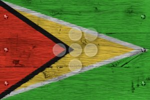 Guyana national flag painted old oak wood fastened - Popular Stock Photos