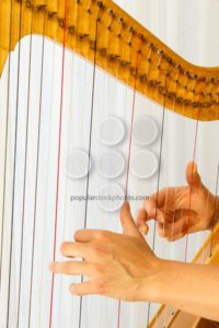 Hands playing celtic harp close-up - Popular Stock Photos