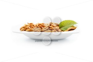 Healthy mealworms on white plate with decoration - Popular Stock Photos