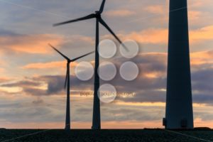 Huge windmill in motion at sunset - Popular Stock Photos