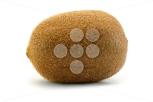 Kiwi sideview close up isolated white background - Popular Stock Photos