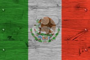 Mexico national flag painted old oak wood fastened - Popular Stock Photos