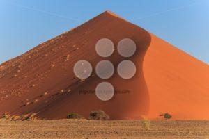 Mighty red sanddune Sossusvlei - Popular Stock Photos