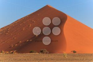 Mighty red sanddune Sossusvlei - Popular Stock Photos