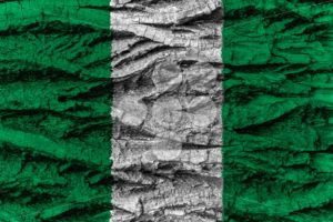Nigeria national flag painted wooden bark tree - Popular Stock Photos