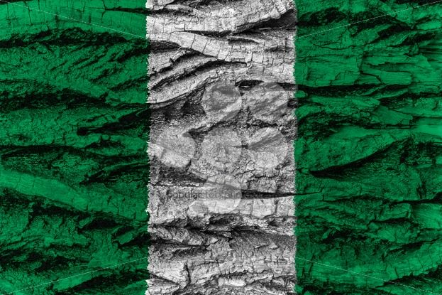 Nigeria national flag painted wooden bark tree – Popular Stock Photos