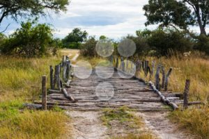 Old fashioned wooden bridge - Popular Stock Photos