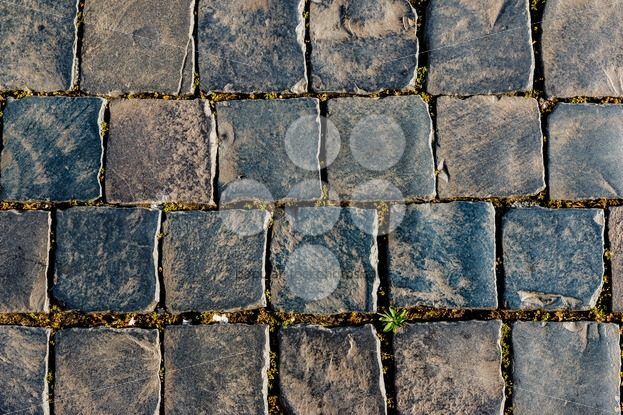 Old square street stones - Popular Stock Photos