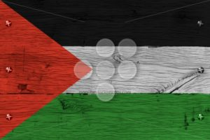 Palestine flag painted old oak wood fastened - Popular Stock Photos