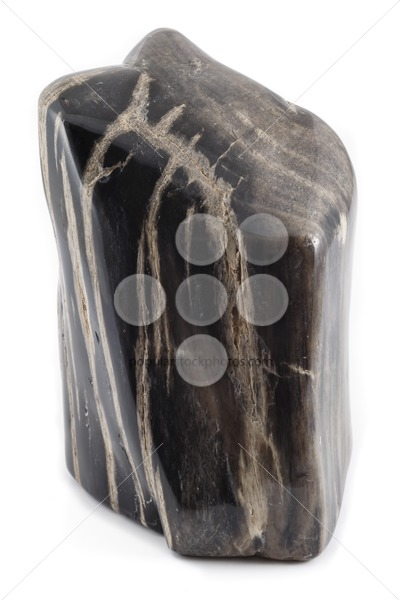 Petrified wood ancient piece black angle – Popular Stock Photos