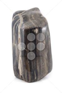Petrified wood ancient piece black sideview - Popular Stock Photos