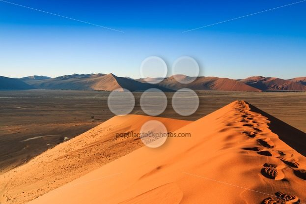 Reaching top red sanddune Sossusvlei – Popular Stock Photos