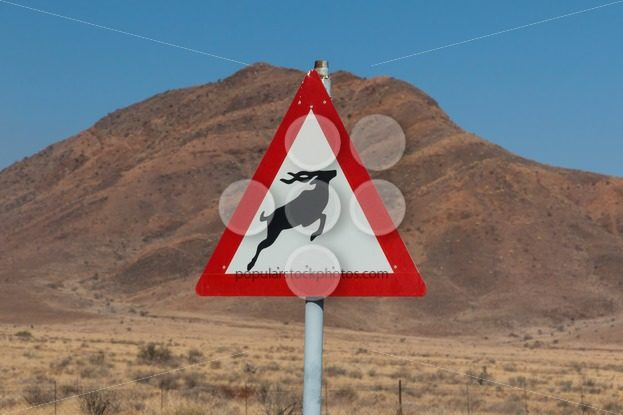Roadsign antelope crossing in africa – Popular Stock Photos