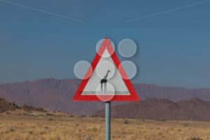 Roadsign giraffe crossing in africa - Popular Stock Photos