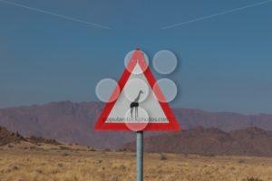 Roadsign giraffe crossing in africa - Popular Stock Photos