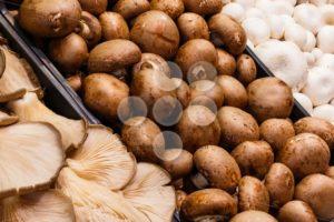 Several mushrooms market - Popular Stock Photos