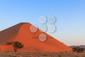 Spectacular red sanddune sunset Sossusvlei - Popular Stock Photos