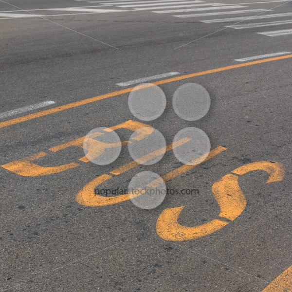 Text bus lane on road - Popular Stock Photos