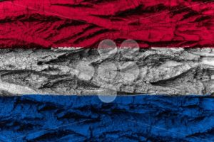 The Netherlands national flag painted wooden bark tree - Popular Stock Photos