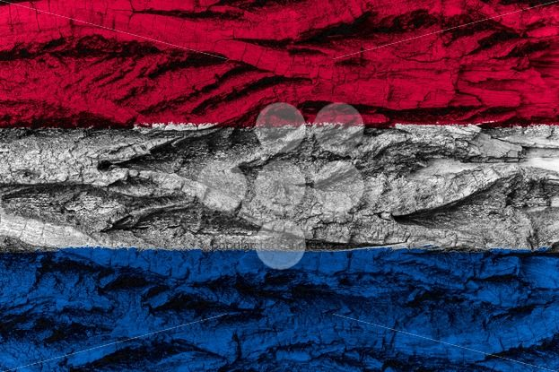 The Netherlands national flag painted wooden bark tree – Popular Stock Photos