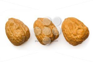 Three walnut isolated white top - Popular Stock Photos