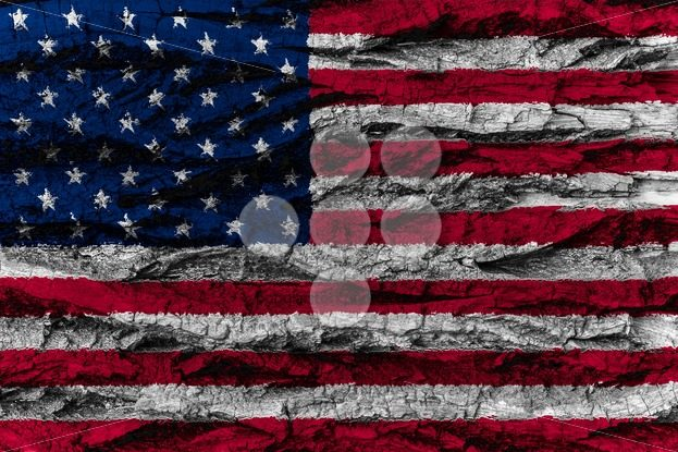 USA, American national flag painted wooden bark tree American na – Popular Stock Photos