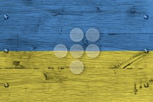 Ukraine national flag painted old oak wood fastened - Popular Stock Photos