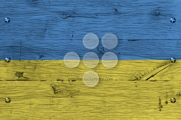Ukraine national flag painted old oak wood fastened – Popular Stock Photos