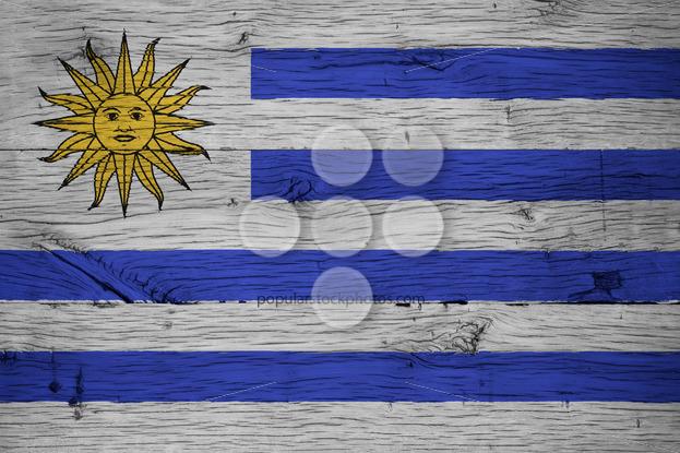 Uruguay national flag painted old oak wood - Popular Stock Photos