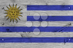 Uruguay national flag painted old oak wood fastened - Popular Stock Photos