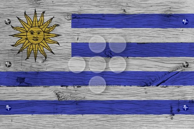 Uruguay national flag painted old oak wood fastened – Popular Stock Photos