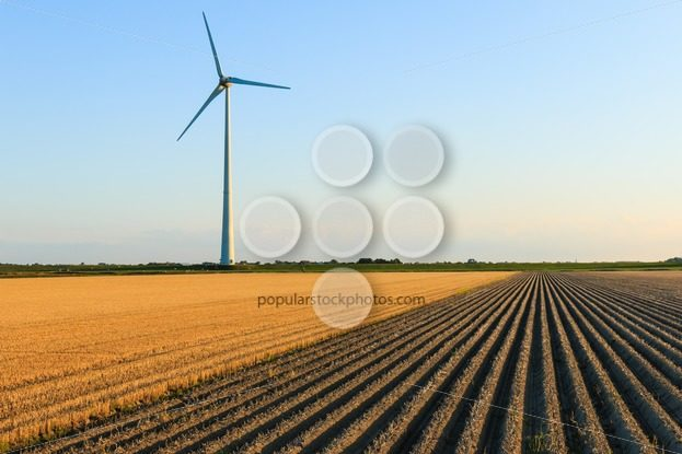 Windmill at farmer fields – Popular Stock Photos